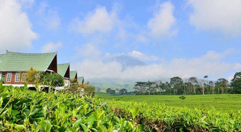 Tempat Wisata di Palembang Gunung Dempo Palembang
