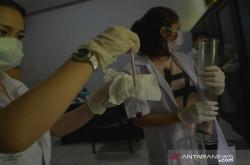 Mahasiswa Buat Hand Sanitizer dari Minuman Keras Cap Tikus   Genpi.co - Palform No 1 Pariwisata Indonesia