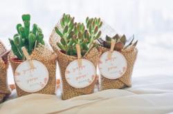 4 Ide Suvenir Pernikahan yang Ramah Lingkungan, Apa Saja? | Genpi.co - Palform No 1 Pariwisata Indonesia