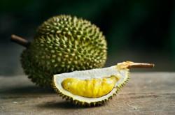 Bau Menyengat Durian Ternyata Bisa Diatasi Dengan 5 Cara Alami | Genpi.co - Palform No 1 Pariwisata Indonesia