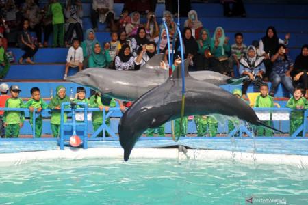 KLHK Tegaskan Peragaan Lumba-lumba Melanggar Etik
