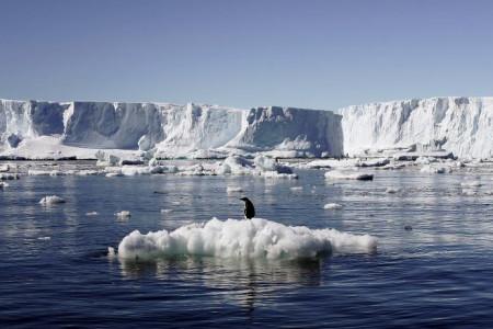 Bahaya! Ada Ancaman Nyata dari Kutub Utara, Dunia Wajib Waspada
