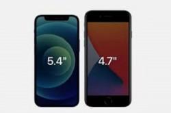 Laris! Hanya 7 Bulan, iPhone 12 Terjual 100 Juta Unit   Genpi.co - Palform No 1 Pariwisata Indonesia