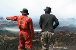 Api Belum Terkendali, Karhutla di Riau Terus Meluas | Genpi.co - Palform No 1 Pariwisata Indonesia